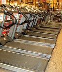 Photo of a row of treadmills